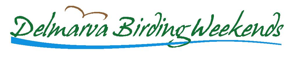 Delmarva Birding Weekends
